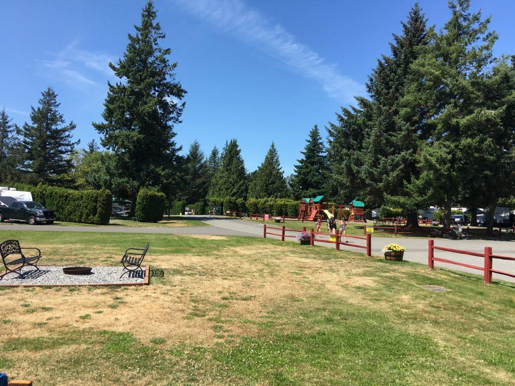 bench w playground 2